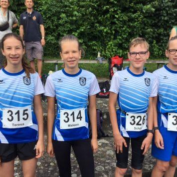 Ilmtallauf 2021 in Geisenfeld – Laufcup die 2.
